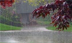 استان بوشهر از جمعه تا دوشنبه بارانی است/ هواشناسی اخطاریه داد