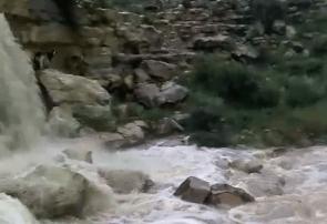 بیشترین میزان بارندگیهای اخیر استان در جم ثبت شد