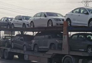 توقیف تریلی خودروهایی که مالکانش با پرواز به بوشهر آمده بودند! +فیلم