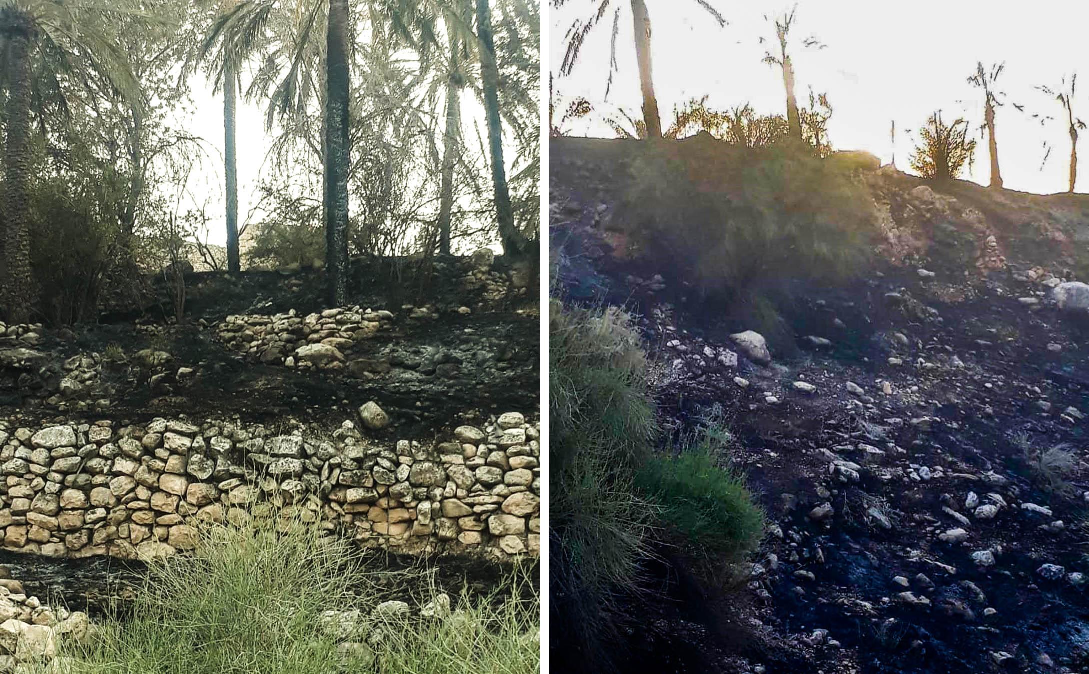 وقوع آتش سوزی در جم/ مهار آتش پس از تلاش ۶ ساعته+تصاویر