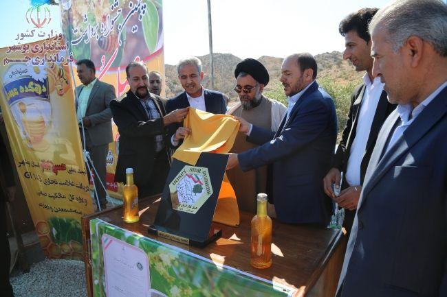 گزارش تصویری: پنجمین جشنواره استانی عسل کنار در جم