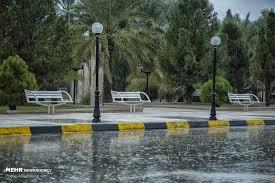کارشناس هواشناسی: کاهش دمای هوا در استان بوشهر/ سامانه بارشی جدید در راه است + میزان بارشهای سامانه اخیر