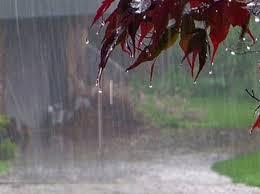 هواشناسی: سامانه جدید بارشی وارد بوشهر میشود/بارش های پراکنده و رعد و برق در انتظار استان
