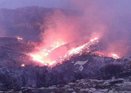آتش سوزی گسترده در کوه های جم/ آتش همچنان زبانه می کشد/ مسیر صعب العبور کار اطفا را سخت کرده است+تصاویر