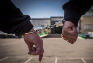 باند سارقان خودرو در کنگان منهدم شد/ دستگیری ۴ متهم