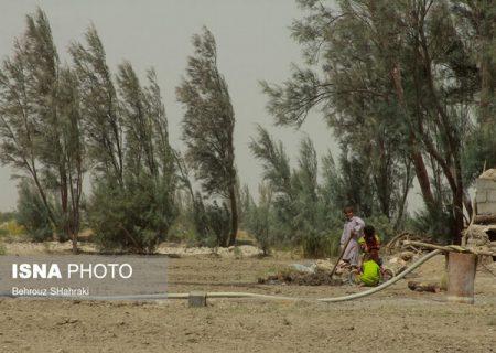 قهر پاییزی آسمان با کشاورزان بوشهری